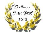 Challenge-petit-bac-2013.jpg