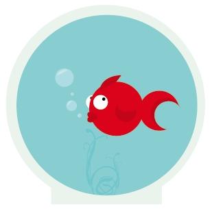 Dessin Poisson Rouge Aquarium Nayatidreams